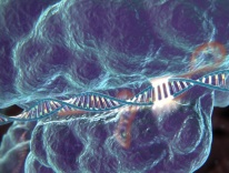 Image courtesy McGovern Institute for Brain Research at MIT