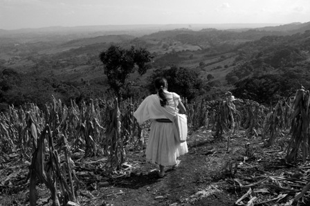 A woman walks through a cornfield in Xalcuahutla