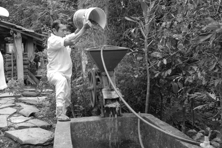 A campesino washes coffee